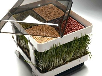 Healthy Sprouter - Wheatgrass Grower, Grow Your Own Sprouts and Micro-Greens Too! No Green Thumb Needed! by Lexen