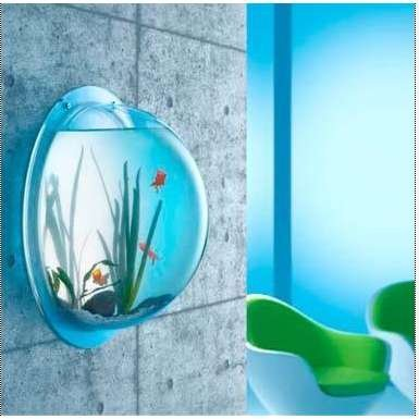 Wall mounted fish bowl bubble for goldfish beta or for Bubble wall fish tank