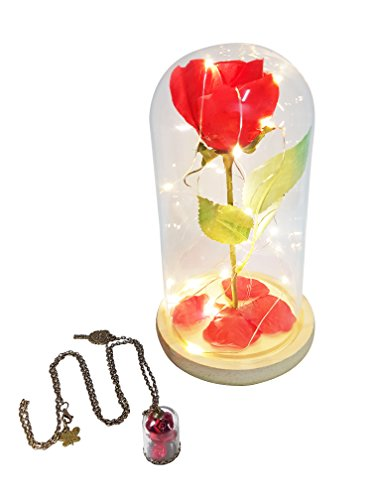 eSay Rose Dome, LED Light, Beauty and the Beast, Rose Led Night Light, Valentine Gift (Lime Wedge Adult Costumes)