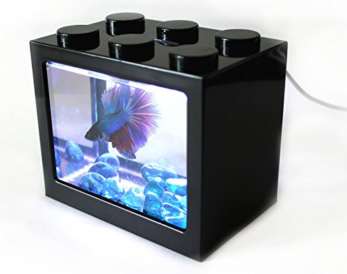 AquaticHI Nano Tank, Extra Small, Mini Desktop Aquarium / Fish Tank / Terrarium, Perfect for the Kids, Office or Home for Small Betta Fish, Shrimp, Insects and Succulents (Black) (Kids Fish Aquarium)