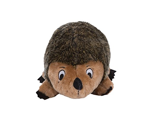 Outward Hound Kyjen Hedgehogz Squeak Toy for Dogs Kyjen Company Plush
