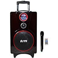 EMB PK82 RED Color 800W 8 Portable Professional Rechargeable BOOM Box Speaker