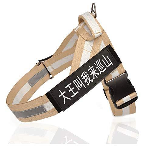 D Medium D Medium Ambiguity Vest Harness,Pet Vest Explosion-Proof Flush Chest Strap Ultra Light Ribbon pet Traction Rope
