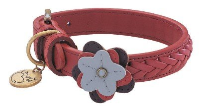 "12""-14"" Petal Wild Rose Dog Collar 3/4"" wide, Medium"
