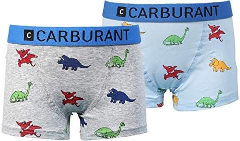C CARBURANT Jungen Boxershorts, Dinosaurier, 2er Pack