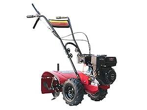 Varan Motors 93020 Motocultor térmico motor 6.5CV anchura de ...
