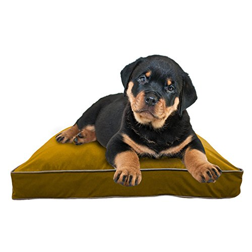 Yogibo DoggyBo - Comfortable Doggy Bed - Soft Bed to Keep your Pup off the Floor - Shape Conforming Bed - Soft Cotton Cover - Perfect for Great Night Sleep - Keeps Cool - Medium