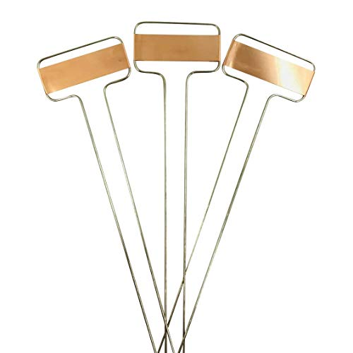 Sanmum Metal Plant Seed Labels Pot Gardening Copper Markers for Plants Identification, Pack of 25 (Type2)