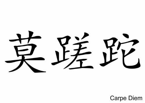 Pared Tattoo Cargar – Adhesivo Pared Carpe Diem (chino), blanco ...