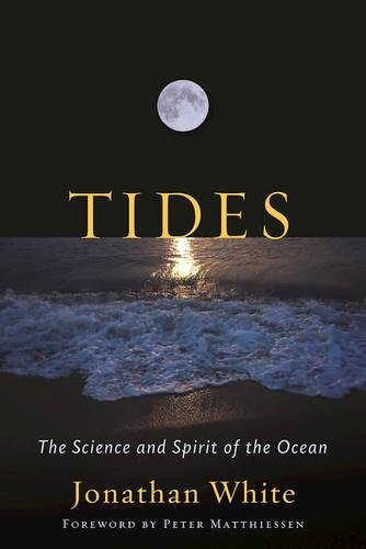 tide tables - 5