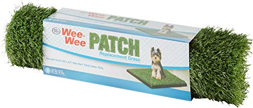 Four Paws Wee Wee Patch Replacement Mat, 19x19 Inch, Small, 12 -