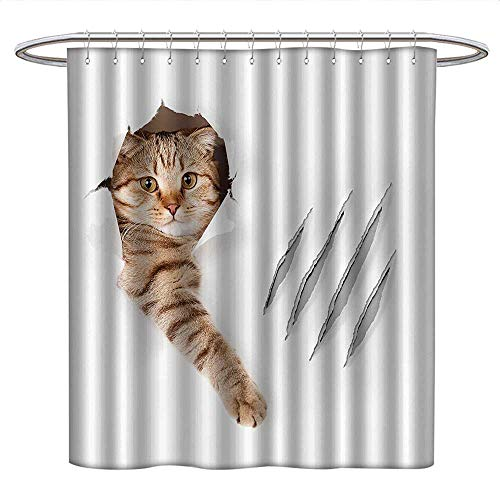 Anshesix Animalcloth Shower curtainFunny Cat in Wallpaper Hole with Claw Scratches Playful Kitten Cute Pet PictureCurved Shower Curtain rodBrown White