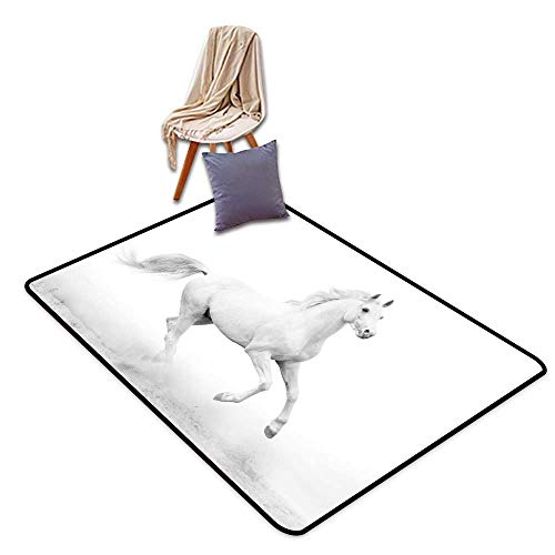 Door Rug Indoors Black and White Decorations White Stallion Running Horse Gallop Motion Speed Equestrian W55 xL79 Suitable for Restaurants,Family Rooms,corridors,foyers.