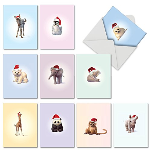 Note Driver Cards - 10 Cute 'Christmas Zoo Babies' Note Cards with Envelopes 4 x 5.12 inch, Blank Holiday and Xmas Stationery with Baby Animals in Santa Hats - Panda Bear, Monkey, Penguin Season's Greetings M6726XSB
