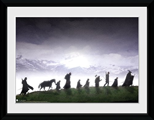 30 x 41cm Lord Of The Rings Fellowship Of The Ring