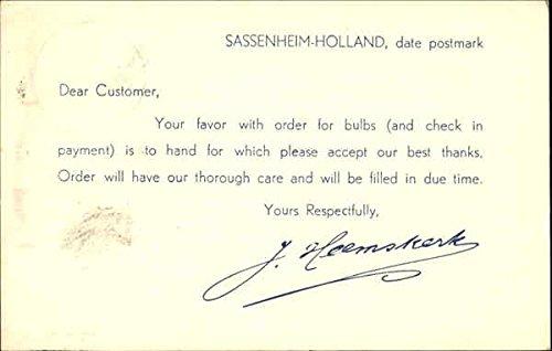 Originals Postmark (Sassenheim Holland Date Postmark Other Topics Original Vintage Postcard)