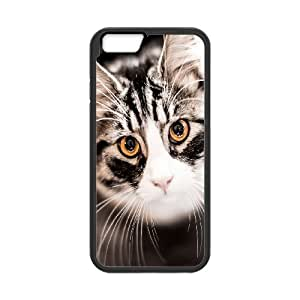 """Best Phone case At MengHaiXin Store Grumpy Cat,Because Cats Pattern 213 For Apple Iphone 6,4.7"""" screen Cases"""