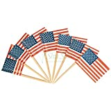 Oasis Supply 144 Count American Flag Picks