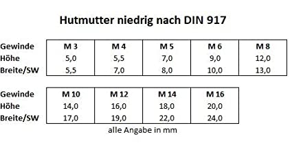 Hutmuttern niedrige Form DIN 917 M3//M4//M5//M6//M8//M10//M12//M14//M16 Edelstahl V2A //// EHK-Verbindungstechnik M10 10 St/ück