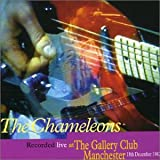 Live at the Gallery Club