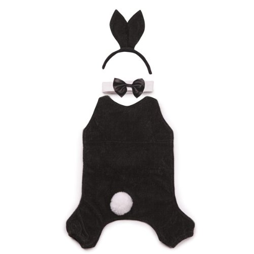 Casual Canine Party Hounds Bunny Costume, X-Large ()