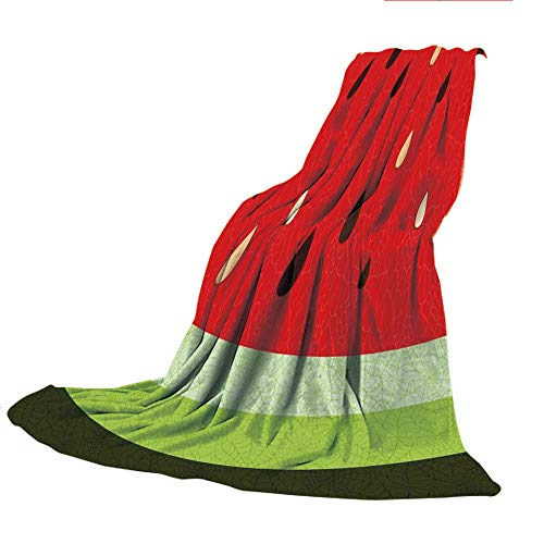 Customized Comfortable Blanket Sofa Bed or Bed 3D Printing,Nature,Macro Watermelon Pattern Fresh Ripe Organic Fruit Seeds Cute Artsy Illustration,Red Green Black,47.25