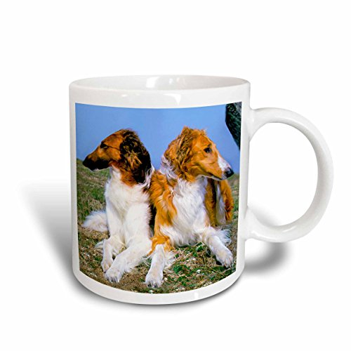 Borzoi Mug (3dRose Borzoi Mug, 11-Ounce)