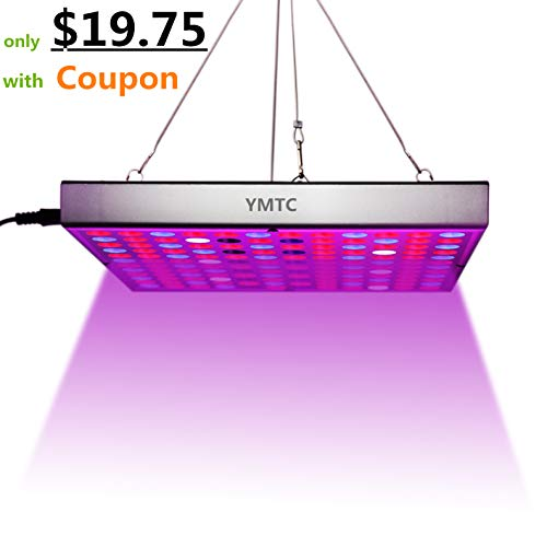 Led Grow Light Basics in US - 1