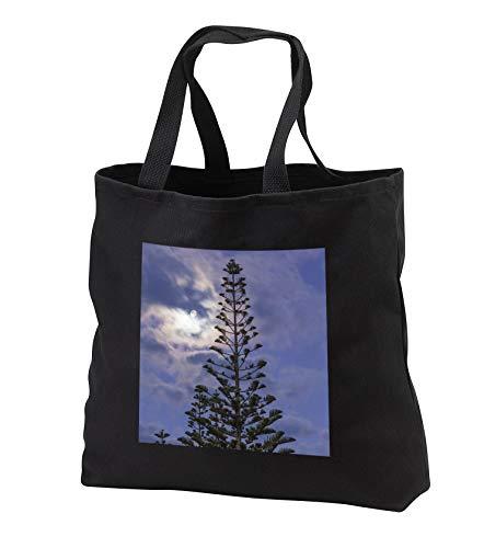 3dRose Danita Delimont - Trees - Araucaria Pine and moon - Black Tote Bag JUMBO 20w x 15h x 5d (tb_312960_3)
