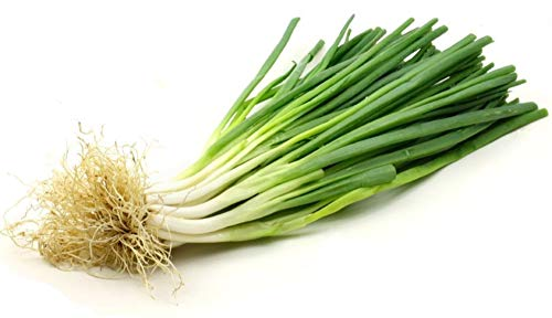 100 Seeds Allium Fistulosum Seeds Perennial Vegetable Bonsai Seeds Japanese Bunching Onion Organic #32836228628ST