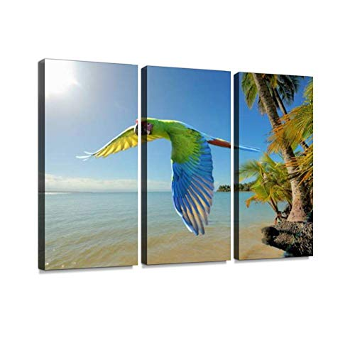 (YKing1 Great Green Macaw at The Beach in Costa rica Wall Art Painting Pictures Print On Canvas Stretched & Framed Artworks Modern Hanging Posters Home Decor 3PANEL)