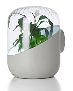 ANDREA: Plant-based Air Purifier (White)