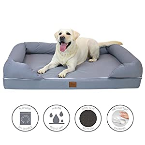 Amazon.com : Lux by FrontPet Memory Foam Dog Bed Lounger