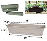 Bloem Dura Cotta Window Box Planter