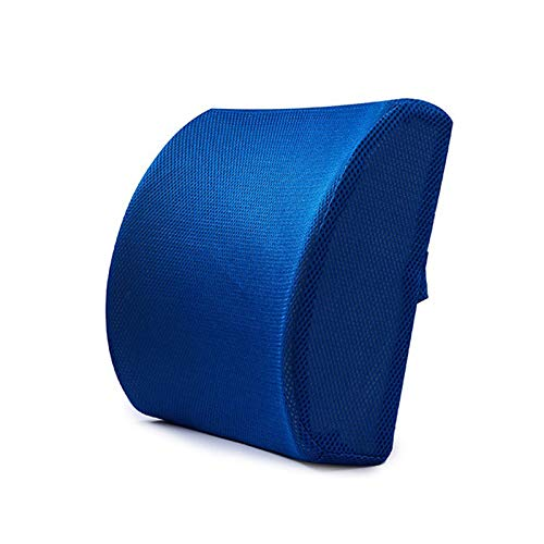 ANYIKE Memory Foam Lumbar Support Back Cushion, Orthopedic Waist Pillow Best for Back Pain Relief For Office Chair Car Seat