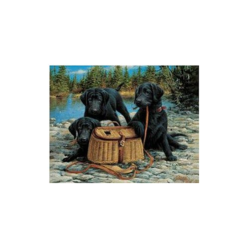 Catch 1000 Piece Puzzle (White Mountain Puzzles Gone Fishin 1000 Piece Jigsaw Puzzle)