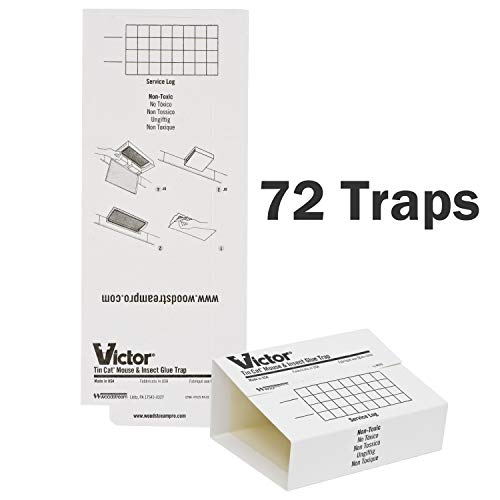 Victor M309 72 Pack Insect & Mouse Glue Board, White ()