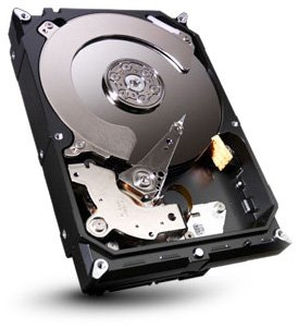 Single 320 Gb - SEAGATE ST320DM000 Barracuda 7200.12 320GB 7200 RPM 16MB cache SATA 6.0Gb/s 3.5 internal hard drive (Bare Drive)