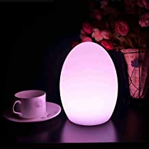 Mr.Go Egg Shaped Waterproof Rechargeable Magic Color LED Mood lamp Night Light with Remote Control 16 RGB Color Tones with 5 Level Dimming & 4 Lighting Effects | Dimmable Eye Protection/Care Efficient Table Lamp - Children Kids Bedside Safe Soothing Night Light - Relaxing Romatic Mood Light Lamp Decoration at Leisure | Super Sturdy, Wireless, Indoor/Outdoor Use | Fun Cool Accent Ambient & Decorative Lighting for Any Place! (Egg 22x22x28cm)