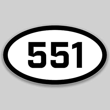 DHDM 551 Area Code Sticker New Jersey City Bayonne Bergenfield Pride Love