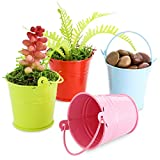 Juvale 48-Count 2-Inch Mini Metal Tin Bucket Pails with Handles for Party Favors, Succulents, 4 Colors
