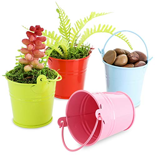 Juvale 48-Count 2-Inch Mini Metal Tin Bucket Pails with Handles for Party Favors, Succulents, 4 -