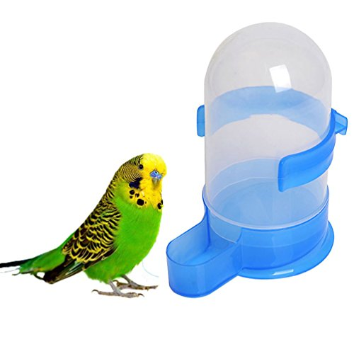 (Bird Seed Food Water Feeding Feeder Bowl Dispenser for Parrot Macaw African Grey Budgie Parakeet Cockatiel Conure Lovebird Dove Cage)