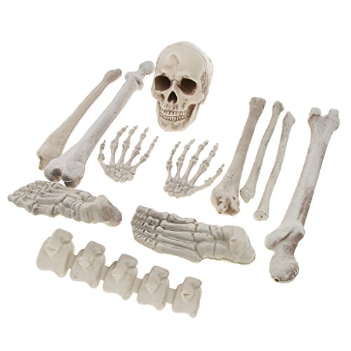 MagiDeal Horrific Skeleton Bones 12 Pieces With Skull for Halloween Party Decorations by Unknown