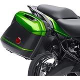Kawasaki Genuine Accessories KQR Hard Saddlebags