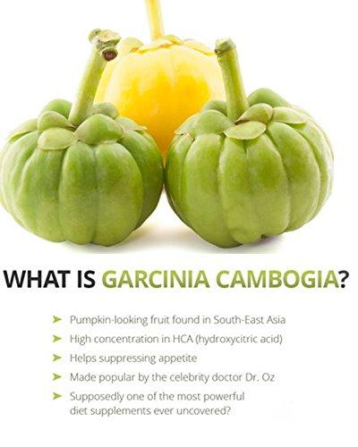 Garcinia pills image 1