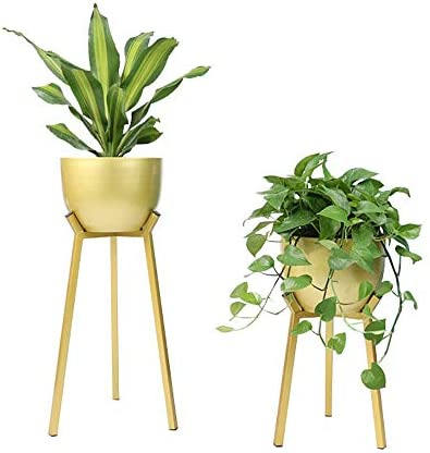 フラワースタンド デコレーションメタルオーナメント多肉植物鉢植え錬鉄のフラワーインテリアスタンド 花台で庭など様々な場所 (Color : Gold A, Size : 36x75cm)