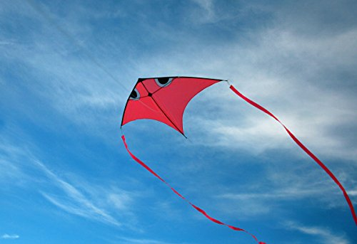 Fish Swim In Sky Delta Kite with Flying Line and Handle (Orange)