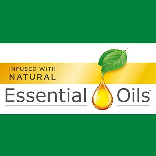 Air Wick plug in Scented Oil 5 Refills, Fresh Waters, (5x0.67oz), Essential Oils, Air Freshener
