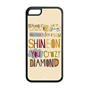 Customize Generic Rubber Material iPhone 5c Cover Pink Floyd Back Case Suitable For iPhone 5c